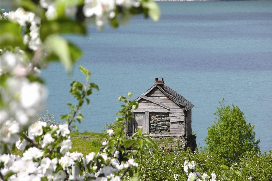 Nasjonal turistveg Hardangervidda og Hardanger