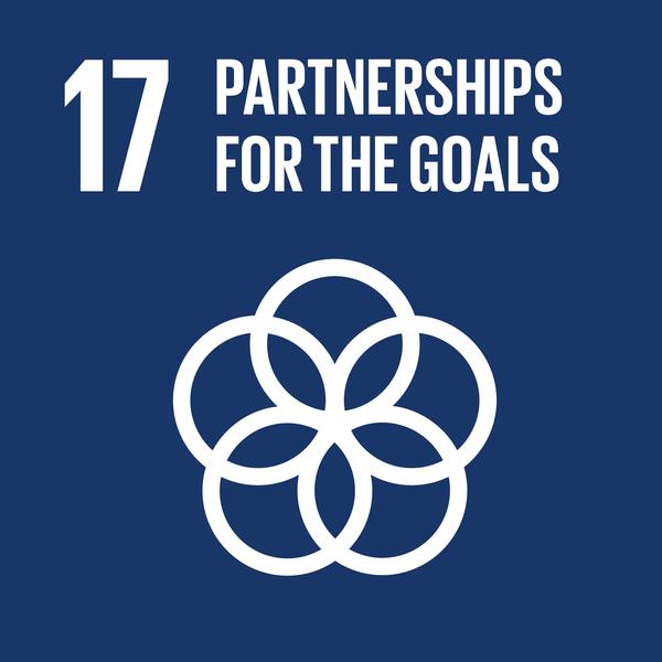 UN SDG 17 icon