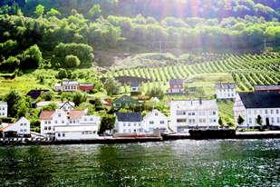 Opplev Hardangerfjorden på et flott fjord cruise med historisk fjordbåt. Daglige turer fra Lofthus, Aga og Utne.