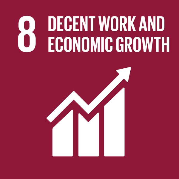 UN SDG 8 icon