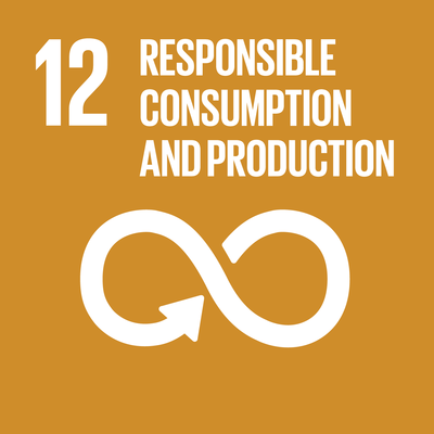 UN SDG 12 icon