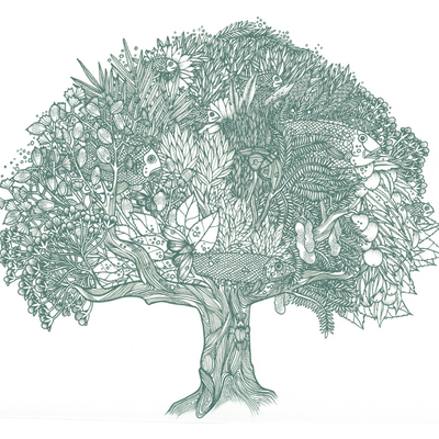 Tom Berry tree with fish illustration