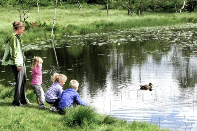 Barn på Smøråsfjellet i Bergen