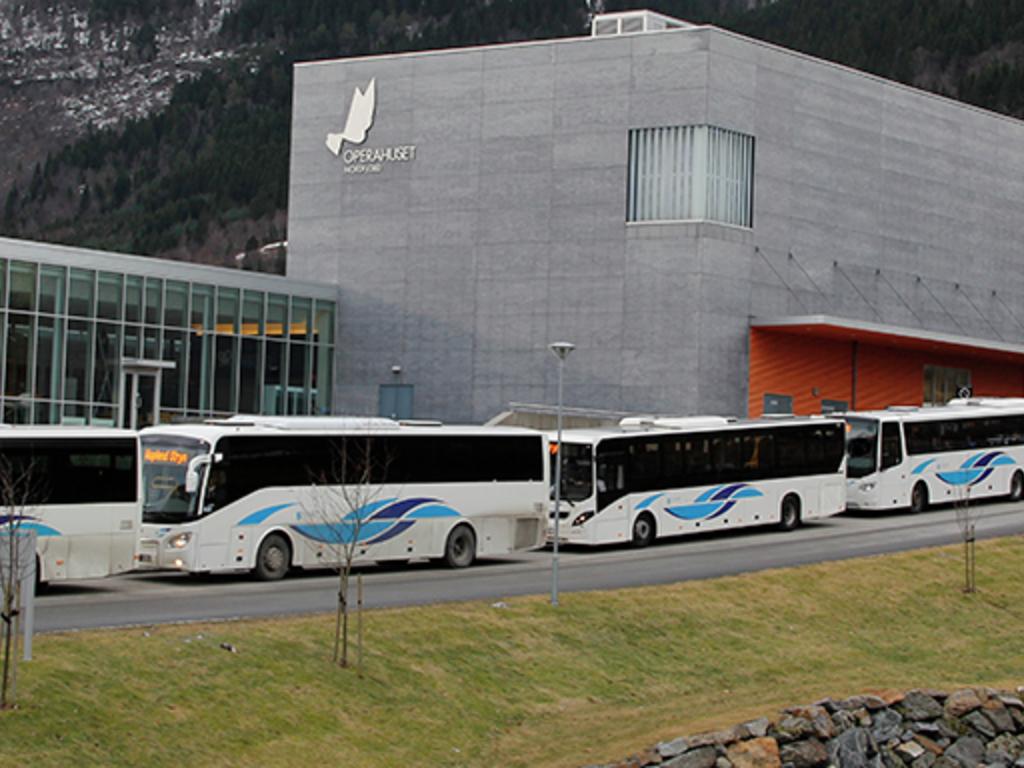 bussar med bussprofilen til fylkeskommunen. Foto: Frode Romarheim
