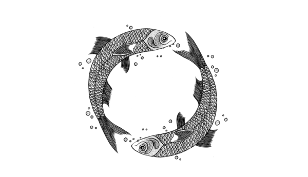 Circle of fish illustration