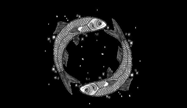 Circle of fish illustration