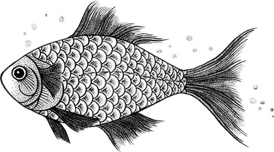 MicroBalance® FLX Fish illustration