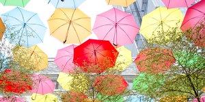 Färgglada paraplyer