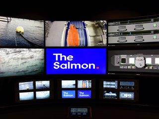 Nancy Bundt/The Salmon