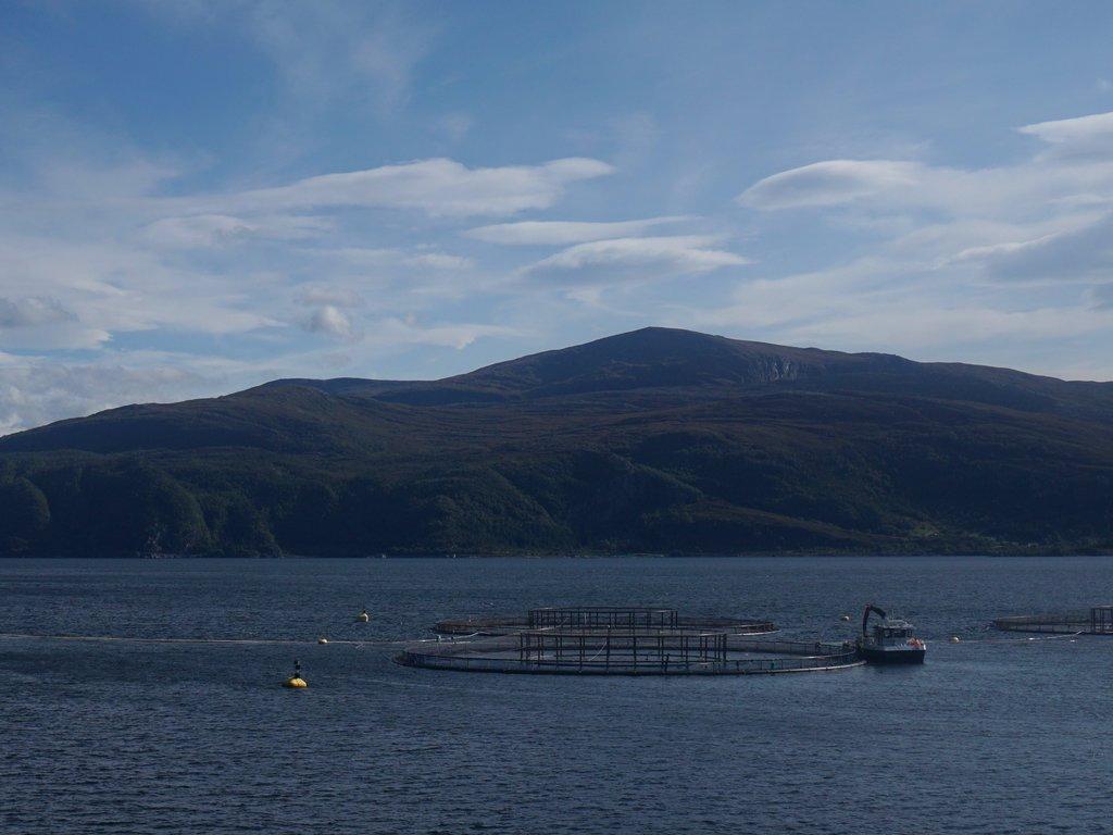 Foto av eit fiskeoppdrettsanlegg, sett litt frå avstand.