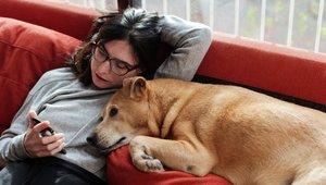 Kvinna och hund i soffan