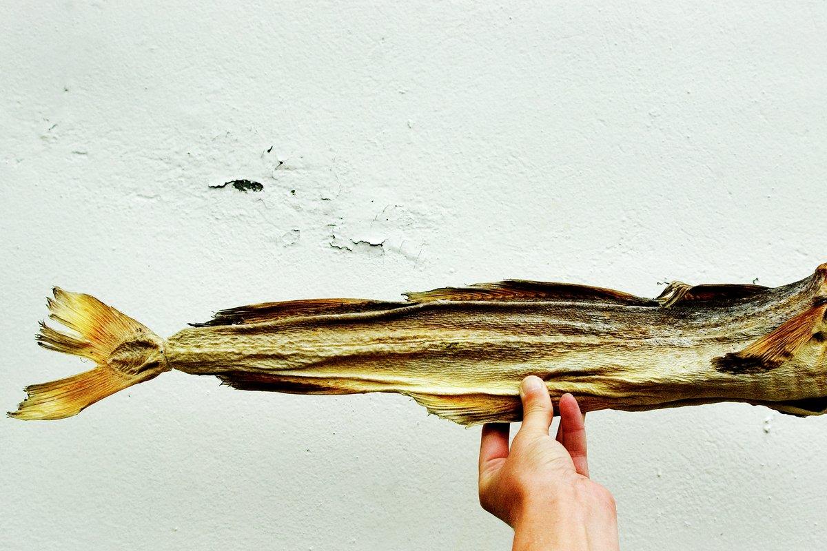 Tørrfisk fra Lofoten er en av de eldste beskyttede matskattene i Norge.