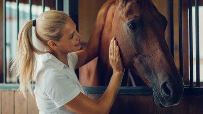 Nainen hoitaa hevosta