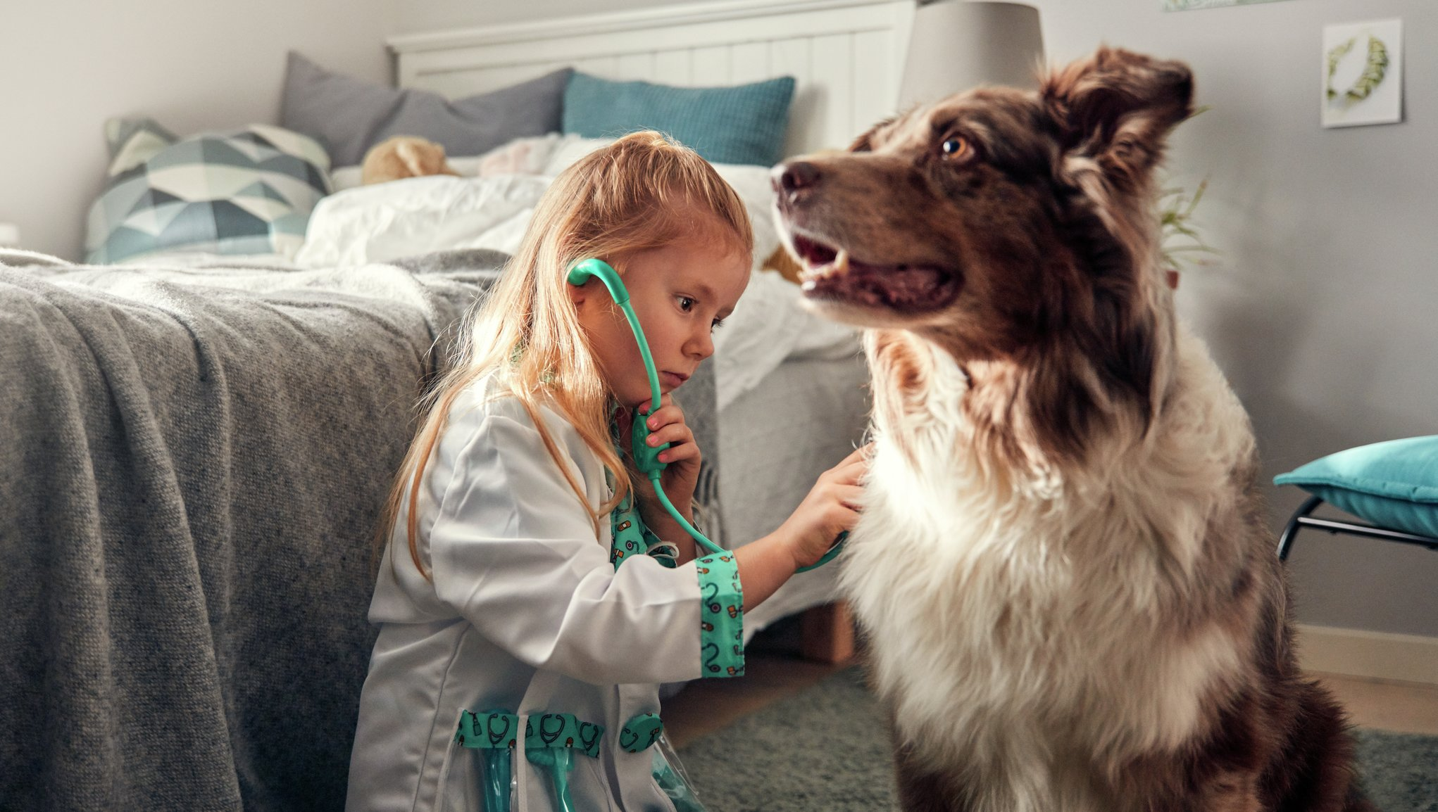 tyttö tutkii koiraa