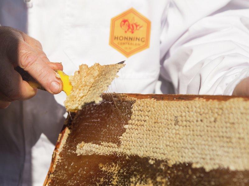 rå-honning