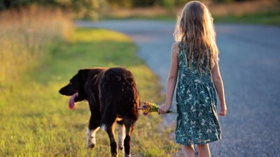Flicka rastar hunden.