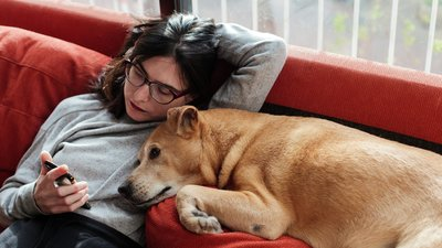Woman lies on the sofa with her dog