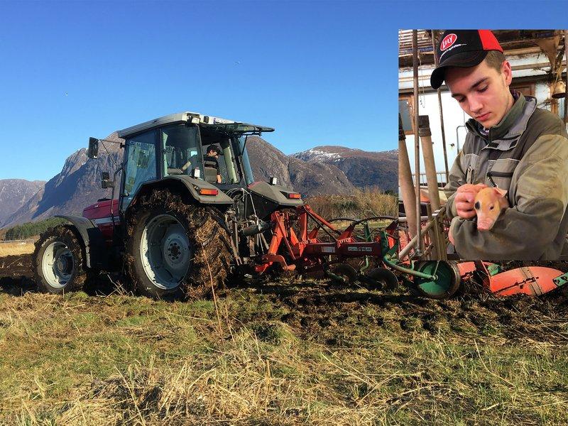 Bonden sjøl: Antonio Tangen, landbruksstudent og bonde på Oterøy utenfor Molde. Her gjøres våronna unna