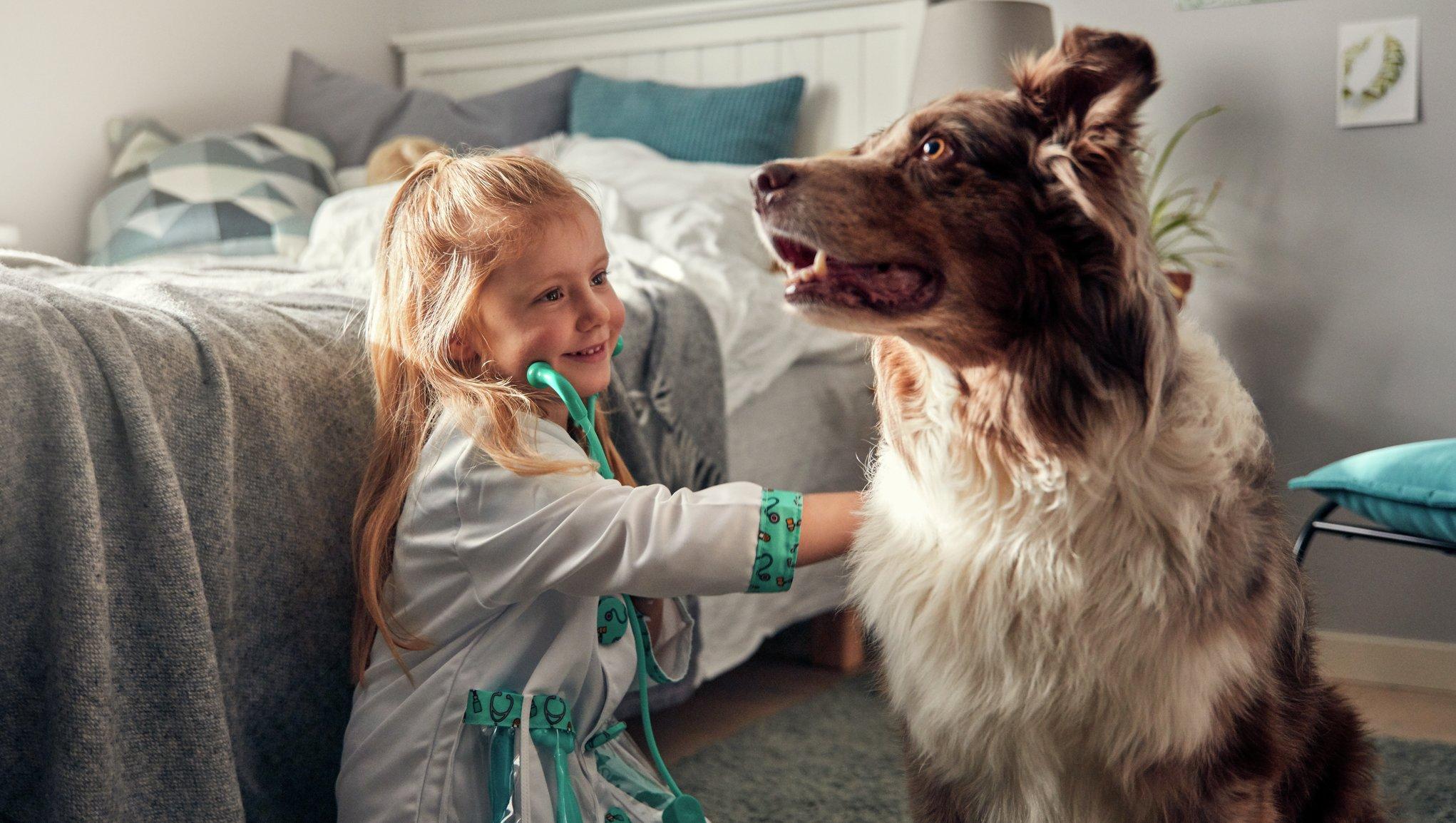 Flicka leker veterinär med hund