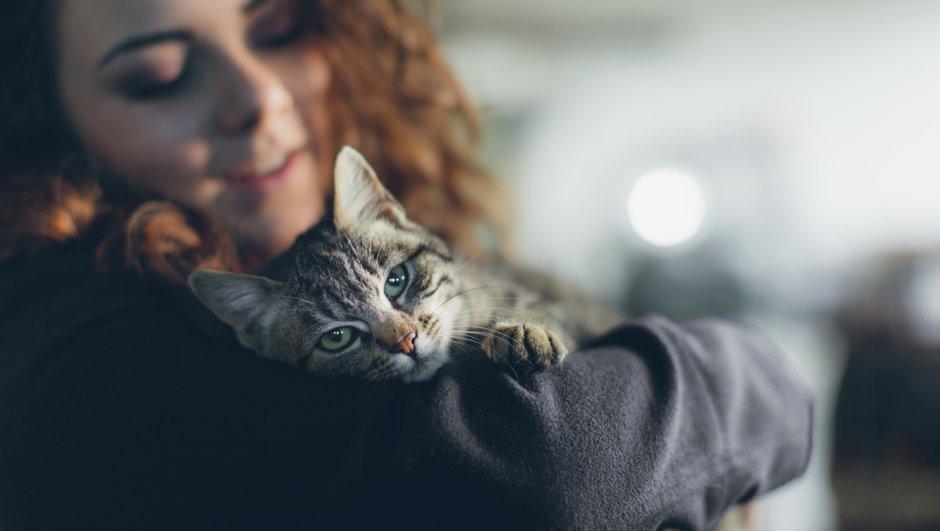 Koer ja kass on sinu pereliikmed. Kindlustus aitab luua võimalused neile haiguse korral maksimaalselt parimat ravi pakkuda.