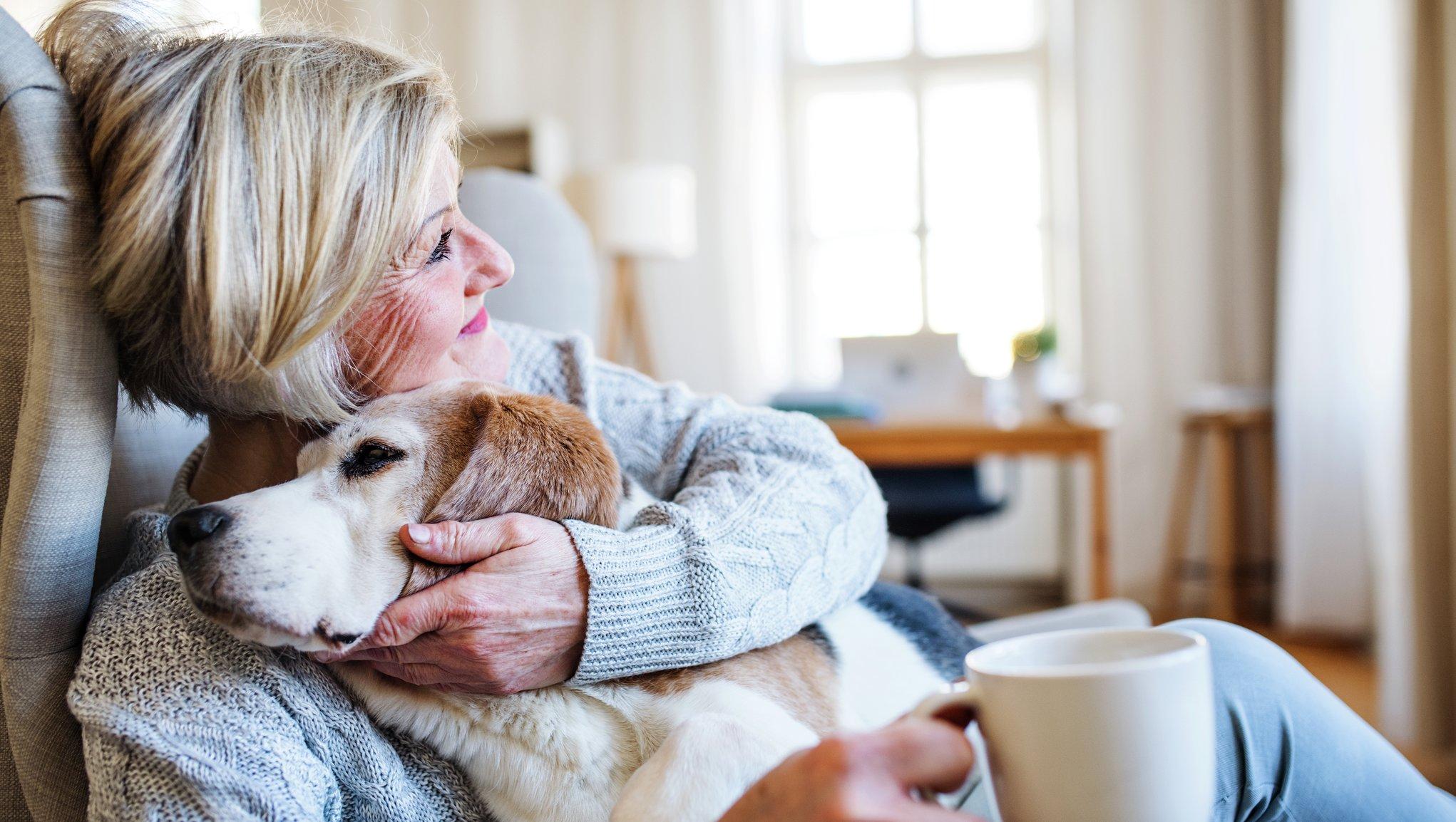 Hund och kvinna