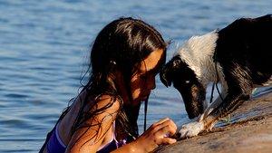Flicka och hund badar