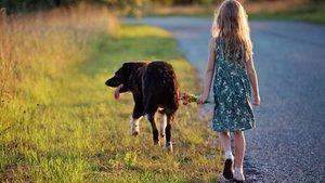 Flicka på hundpromenad