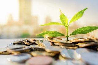 Bærekraftig vekst