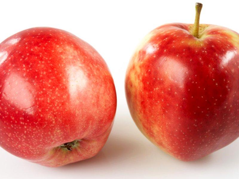 Norsk eple summerred