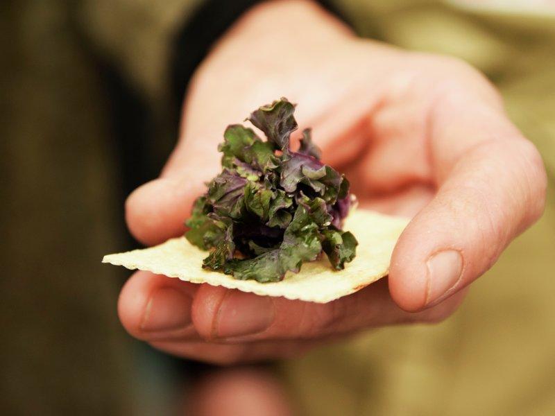 Rosettkål fra Toten - kanskje Norges peneste grønnsak? Den er godkjent av fagjuryen og bærer Spesialitet-merket.