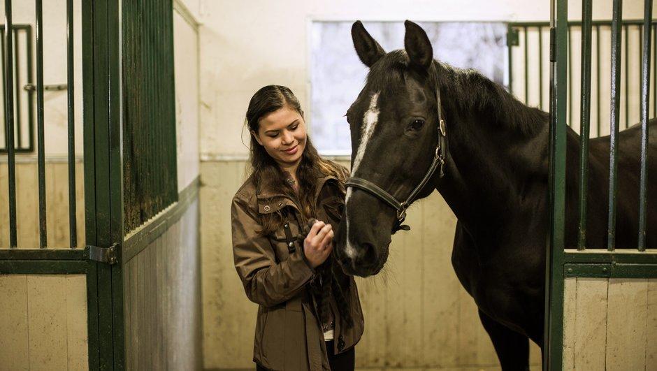 kvinna och häst i box