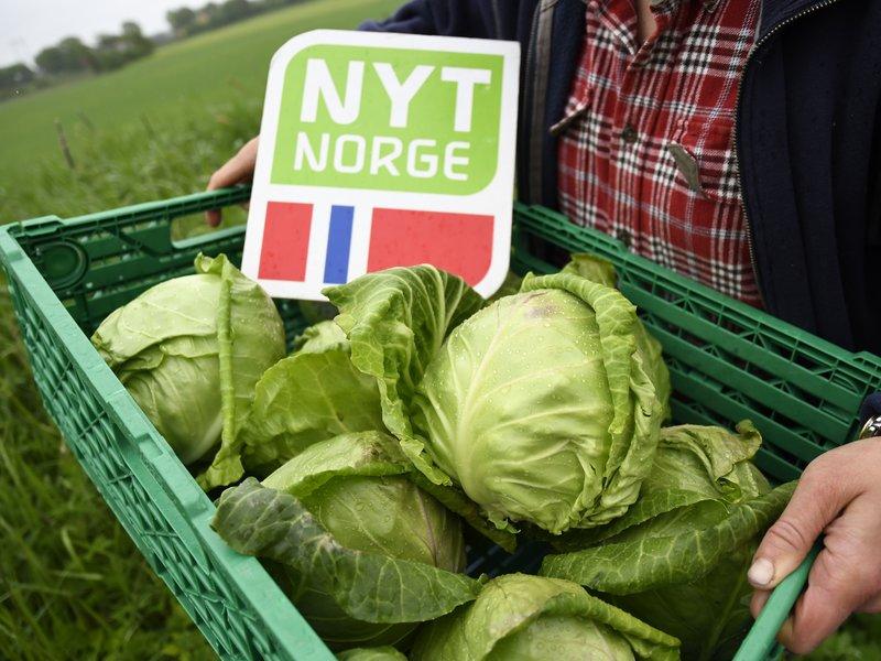 Hvorfor elsker nordmenn norsk mat?