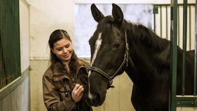 häst och skötare i stallet