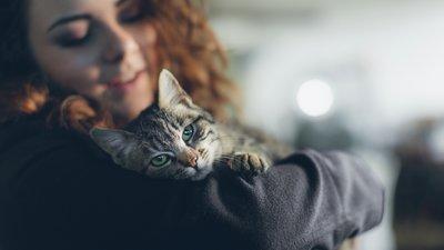 Nainen pitää sylissään kissaa