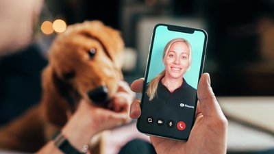 FirstVet för hund