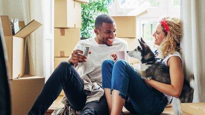 par och hund sitter bland flyttkartonger