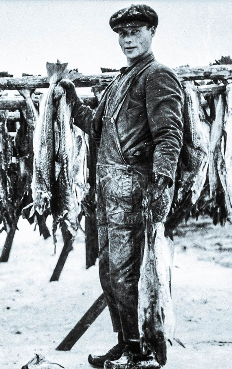 Tørrfisk fra Lofoten.