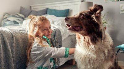 Flicka leker veterinär