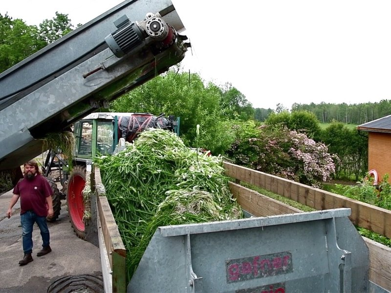Til jord skal du bli: Kvist og kvast fra løkproduksjonen på veg ut til komposthaugene.