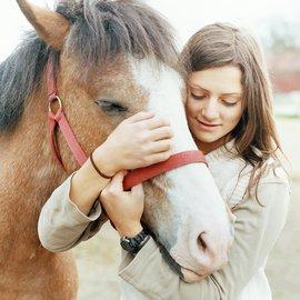 häst och hästägare