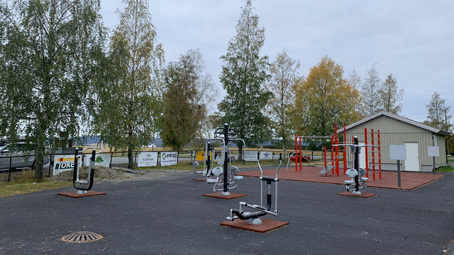 Dalen treningspark