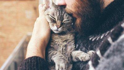 Mies pitää sylissään harmaata kissaa