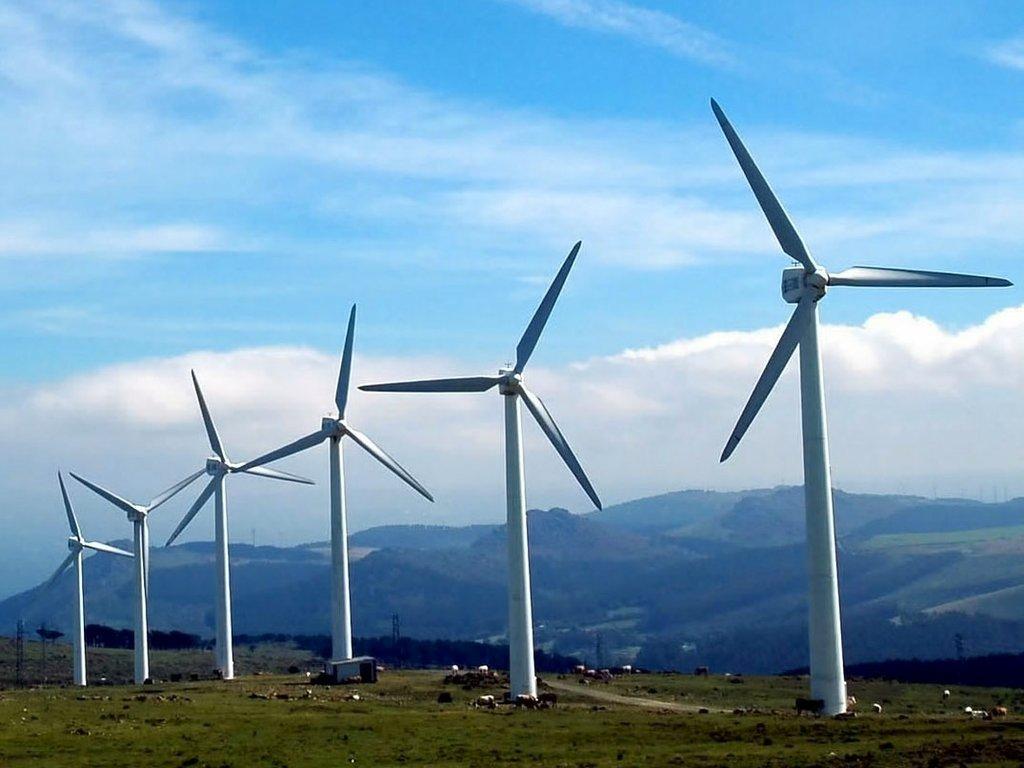 Foto av vindmøller.