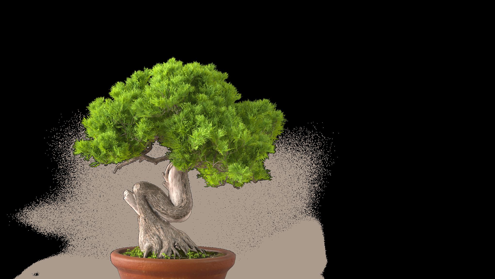 Miljökostnad
