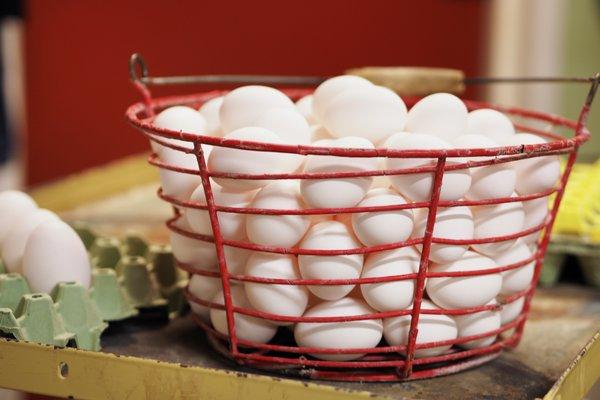 Norske egg