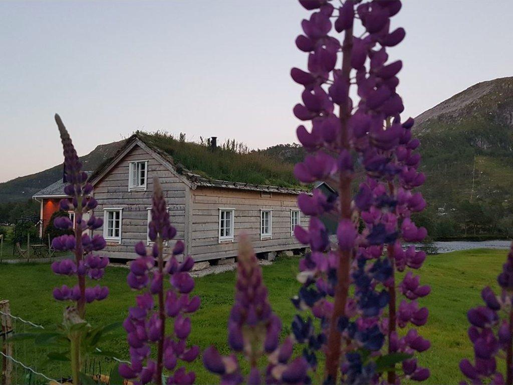 Foto av det gamle storehuset på Flatheim i Gaular. Vi ser huset med torvtak bak nokre lilla revebjøller, som står fremst i biletet.