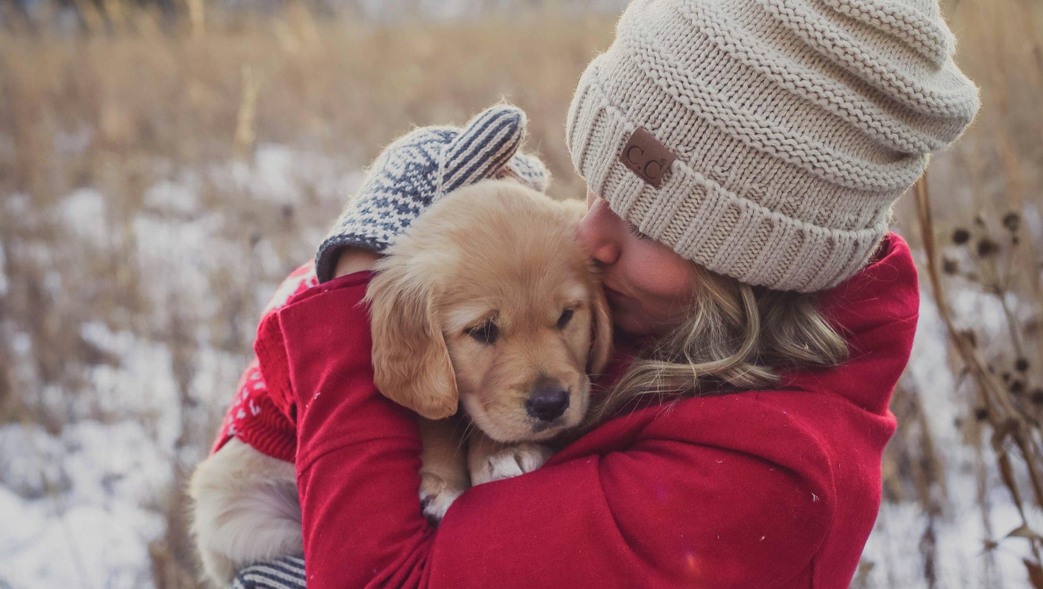 Tips till hundägare