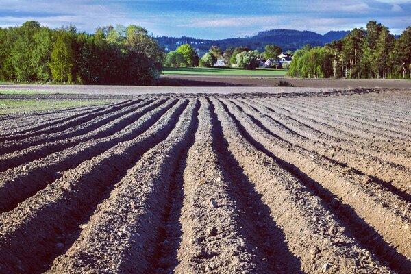 Tid for jordprøver