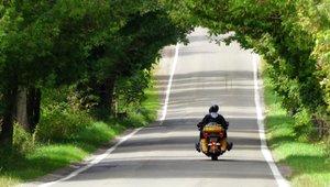 Moottoripyöräiljä ajaa kesäisissä maisemissa