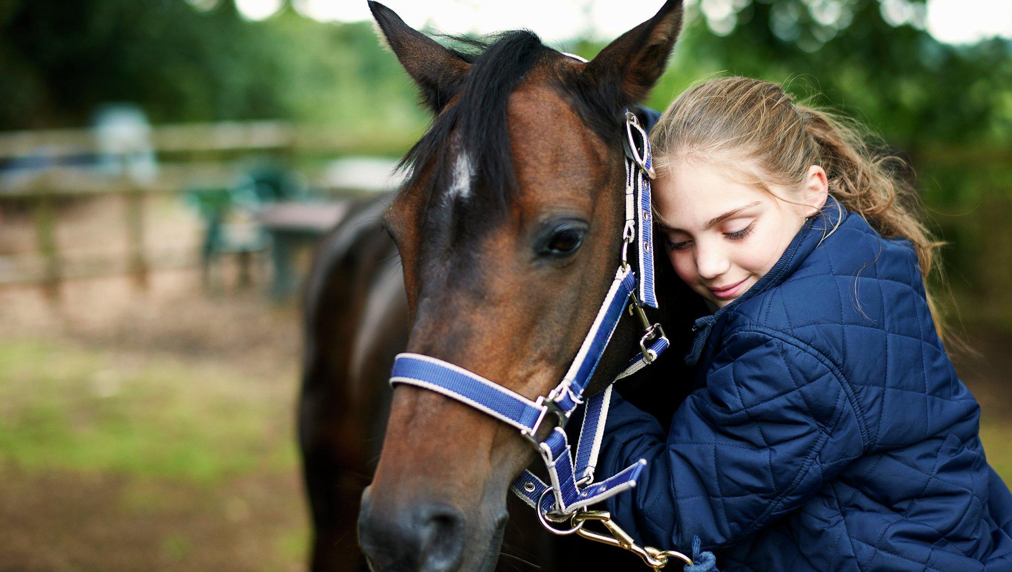 Flicka kramar häst